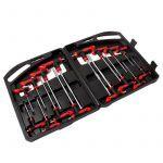 Allen Key set / Torx set 16 Pieces in Case